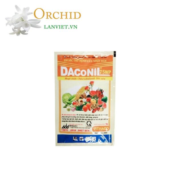 Chuyên trị thán thư đốm vàng lá cho lan Daconil