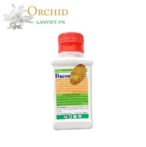 Trị thán thư đốm lá trên lan hiệu quả Daconil