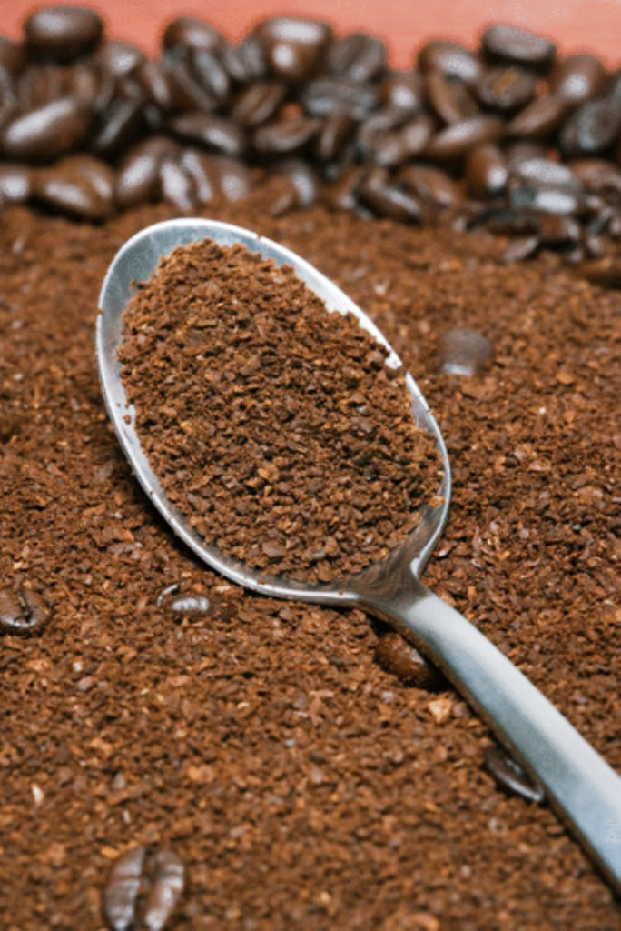 Cách diệt ốc sên cho lan
