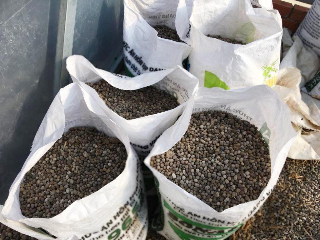 Cách ủ phân dê với nấm trichoderma