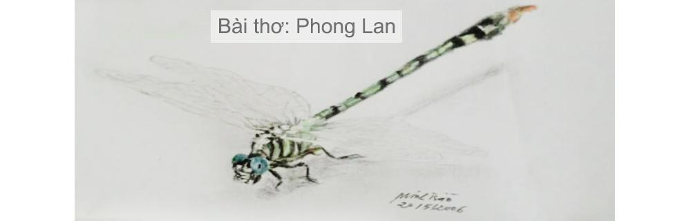 Bài thơ Phong lan