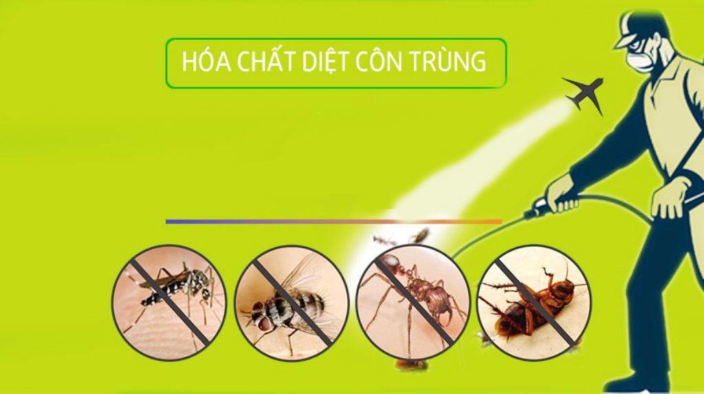Cách diệt côn trùng cho phong lan