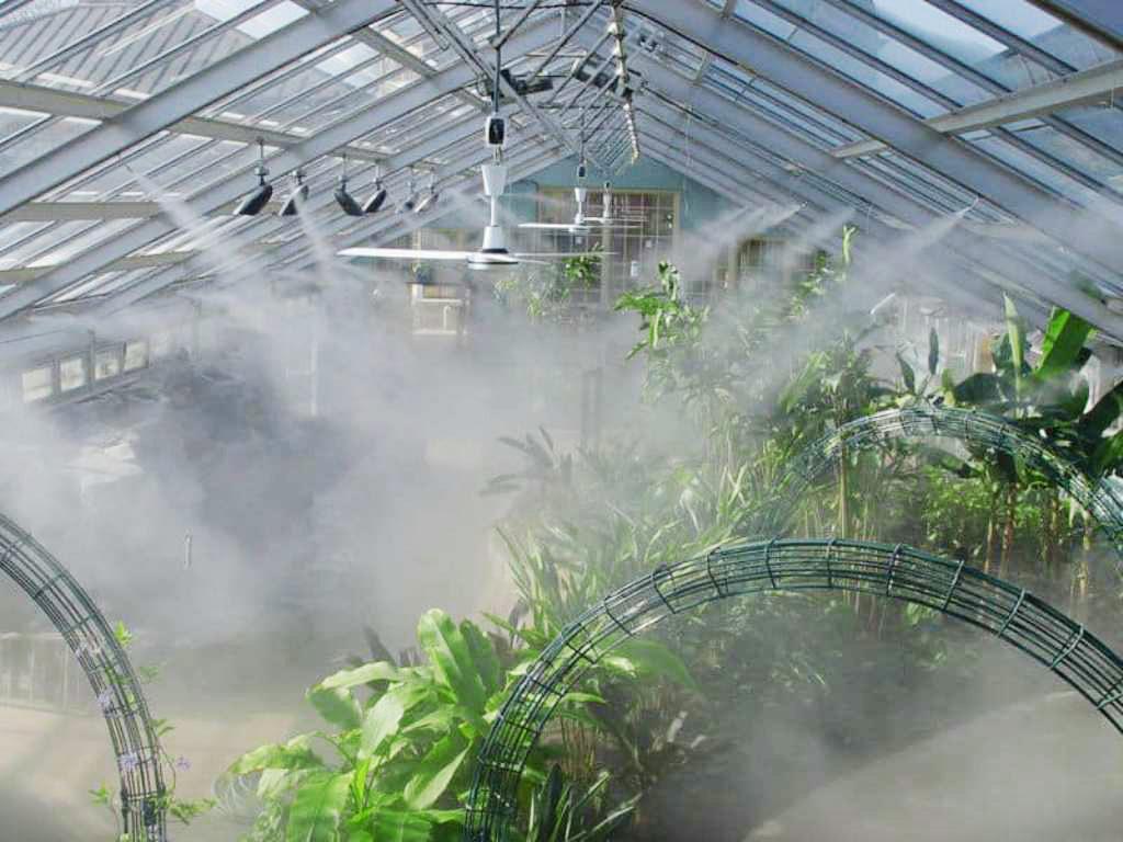 Làm mát vườn lan mùa nắng nóng dựa trên kinh nghiệm: hạ thấp cây, tăng độ thông thoáng, tưới vào buổi tối, phun Canxi B12, ngưng bón phân...